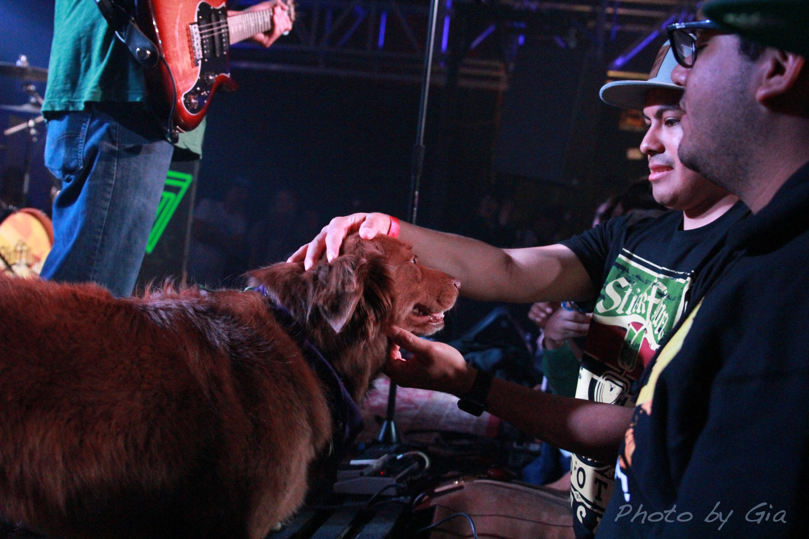 Cocoa The Tour Dog Giving The Audience Some Love.